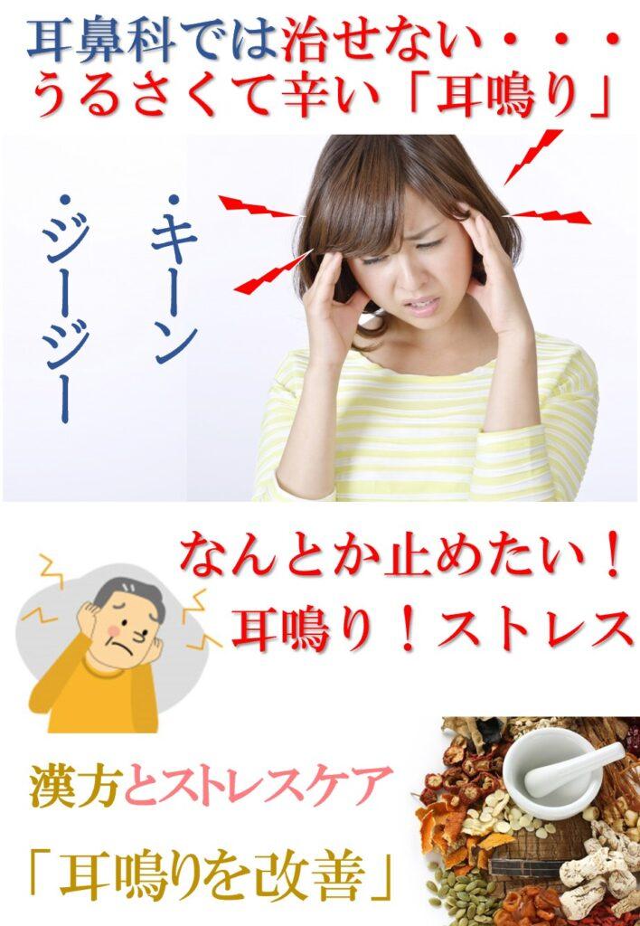 脳に直接聞こえる「ジージー・キーン」などのノイズは耳鳴りです。耳鳴りは大きなストレス原因となるので何とかしたい問題です。漢方を扱う東洋医学では太古から耳鳴りに対する処方が体系化されています。