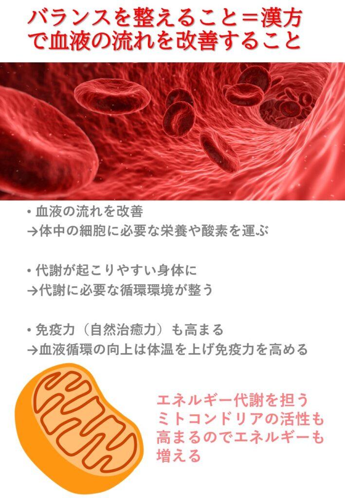 バランスの医学と呼ばれる漢方が行う治療の一つを説明します。東洋医学は「血液のコンディション」を重んじる医学です。多くの方が血液の質が悪かったり流れが悪い傾向にあるので血液循環を改善します。血液循環が良くなるとエネルギー効率が高まり代謝も良くなります。