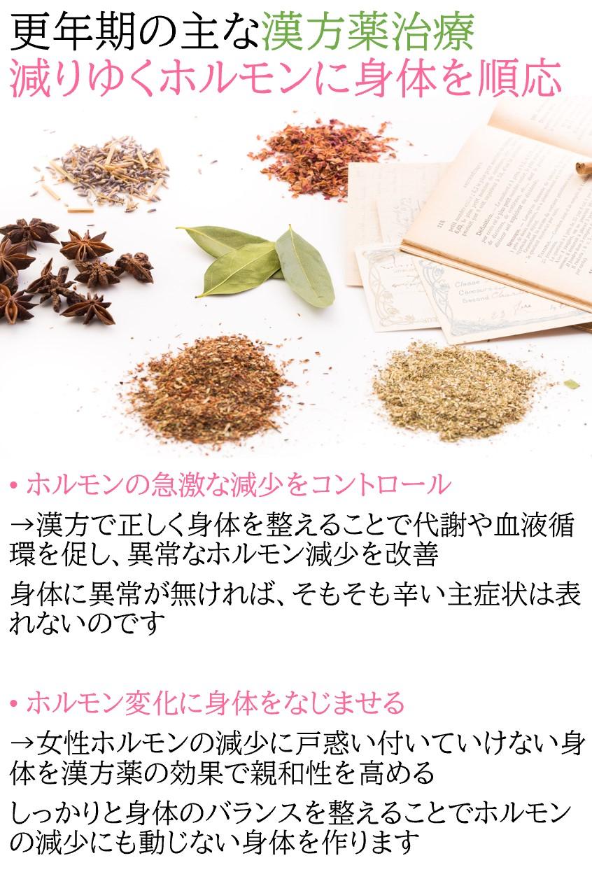 更年期の主な漢方薬治療。減りゆくホルモンに身体を順応